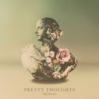 Alina Baraz & Galimatias Pretty Thoughts (FKJ Remix) Artwork
