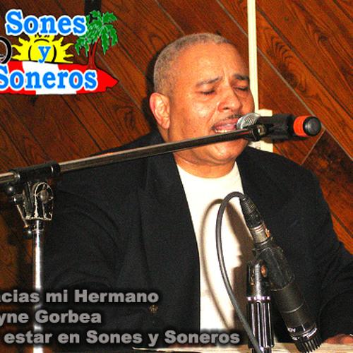 Wayne Gorbea En Sones Y Soneros