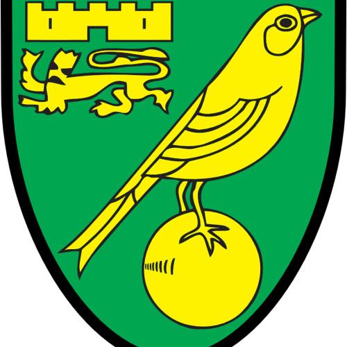 Premier League 2015/16 Preview: Norwich City
