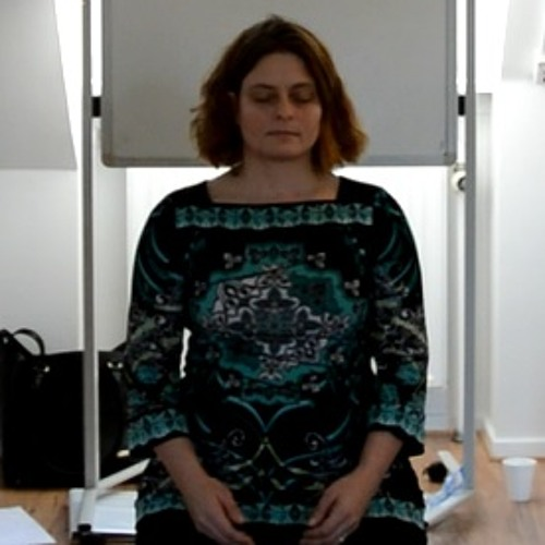 NY Siddende Mindfulness Meditation
