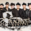 ALACRANES MUSICALES TU INSPIRACION MIX