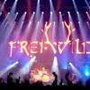 FreiWild - Sieger Stehen Da Auf Wo Verlierer Liegen Bleiben Live In Frankfurt Album CD4