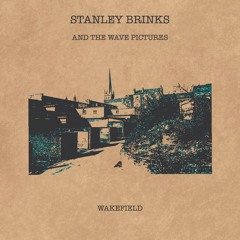 Stanley Brinks and The Wave Pictures - Wakefield