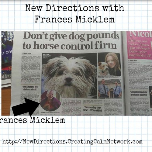 New Directions with Frances Micklem - The Kilkenny Animal Disaster