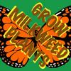 Peak Monarch Breeding Season - 009