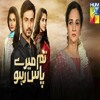 Tum Mere Paas Raho Hum Tv Drama Serial Ost Mp3