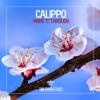 Calippo - Street Blaster (Radio Mix)