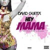 David Guetta ft Nicki Minaj, Bebe Rexha and Afrojack - Hey Mama (Fosbie Remix)