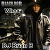 DJ Brian B - Black Rob - Whoa Reggae Remix.MP3