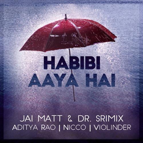 Habibi Aaya Hai - Jai Matt & Dr. Srimix (ft. Aditya Rao, NICCO, & Violinder)