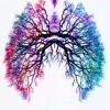 Breathe (Another Ukulele Pink Floyd Cover)