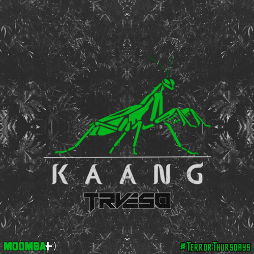 TRVESO - Kaang (Original Mix)