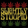 This Joint- Slightly Stoopid