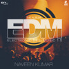 EDM12. Waseem Stark & Mickey Singh - Bad Girl (Naveen Kumar Remix)