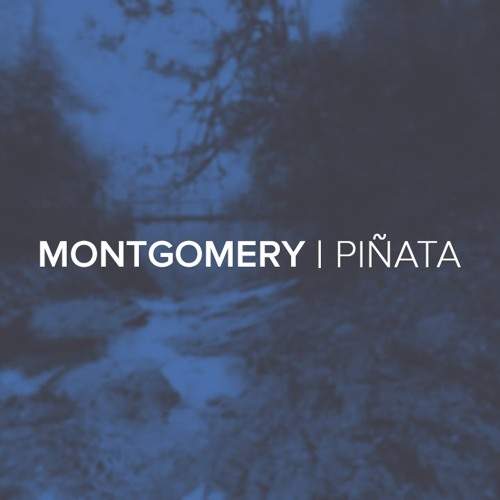 Montgomery - Pinata (HAL5T3D Vs Japanese Wallper Edit)