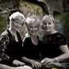 Amadeus - Wedding - Music