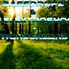 BassDropz & DJ Elektroshock - Wonderland (DJ Elektroshock Remix)