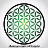 Language of Light | 528 Hz
