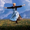 My Favourite Things by Julie Andrews in The Sound of Music (Cover (have tonsillitis so sounds iffy)