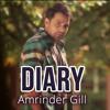 Diary (Amrinder gill - Judaa 2)