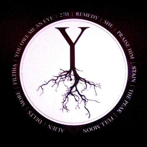 Y (LP snippet) [2013]
