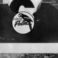 Fake Palms - YTMATLDPH