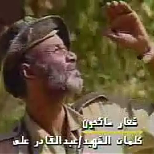 طير السقد مابنوم at Sudan by Mgd Al-Din | Free Listening on