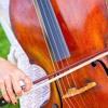 Mozart - Eine Kleine Nacht Musik, Allegro