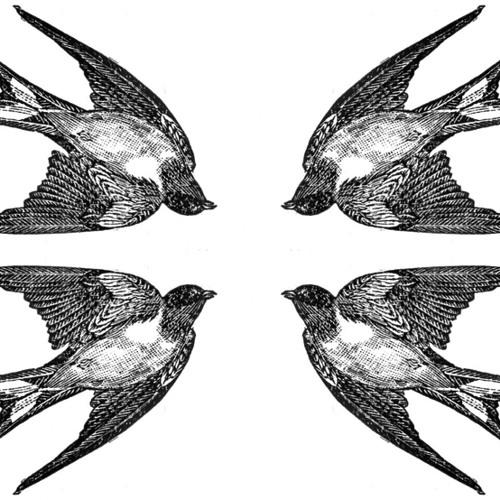 Tyto Alba Quartet/ First Sparrow Circle Session