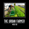 Having the Right Mindset to Save Time, Money, and Mental Trauma – The Urban Farmer – Week 20