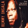 Amisa - Remmy Ongala