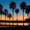 Cali Sunshine - By Brass Hogg and Charaf