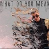 Justin Bieber - What Do You Mean (Audio)