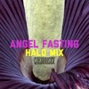 Angel Fasting - Halo Mix™ at CENSORMUSICK studios ink!