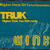 Higher State of Consciousness - Josh Wink (Truk's Higher Than You 808 remix)