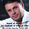 Rabih el Asmar - Ya Chabab el Amn el 3am 2015  ربيع الاسمر - يا شباب الأمن العام