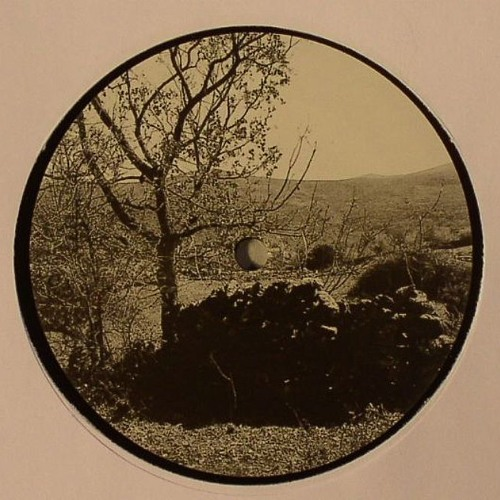 "DICES presents UNTITLED GEAR - FIELDS & FORESTS 1 - 12"" - Repress in stock"