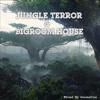 Jungle Terror & Bigroom House Mix
