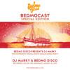 The Soundwave Croatia 2015 Disco & Boogie Boat Party - Part 1 - BEDMO DISCO