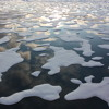 Youth File Climate Change Lawsuit Against Federal Government