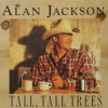Alan Jackson roger miller Tall Tall Trees  Cover Acustic