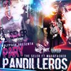 Party Pandilleros | Seler ft Madafacker mp3
