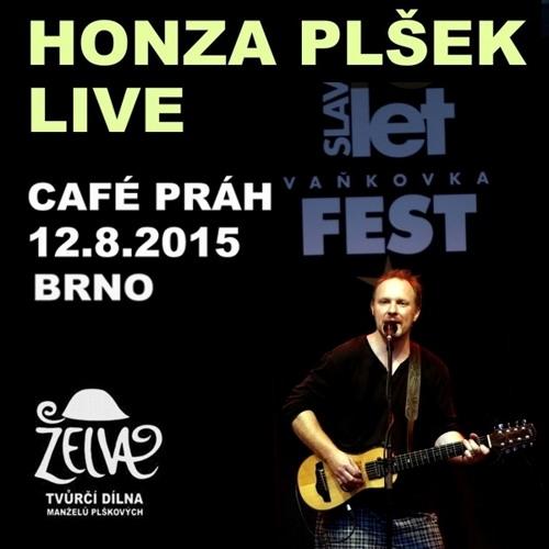 Honza Plšek LIVE Café Práh Vaňkovka Fest 12.8.2015