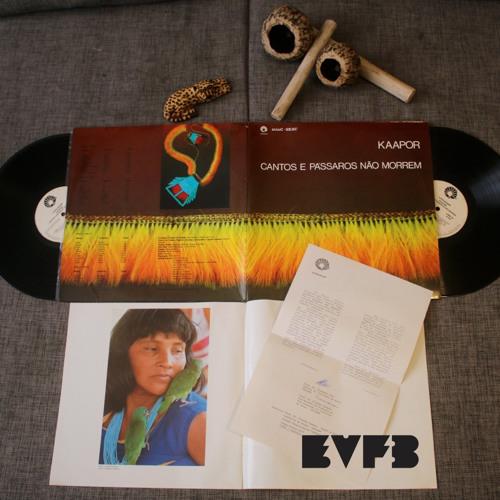 EVFB MIX: PAB - 1 - Passive/Agressive Blog - Primeiro - Experimental Brazil Vinyl