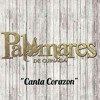 ♥ Canta Corazon ♥ Palomares de Ojinaga ((( Single 2015 )))