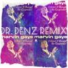Marvin Gaye - Heard it Trough the Grapevine [Dr. Denz Remix]