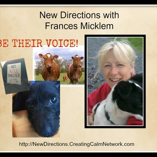 New Directions with Frances Micklem - Be Their Voice - Help the Animals - Now