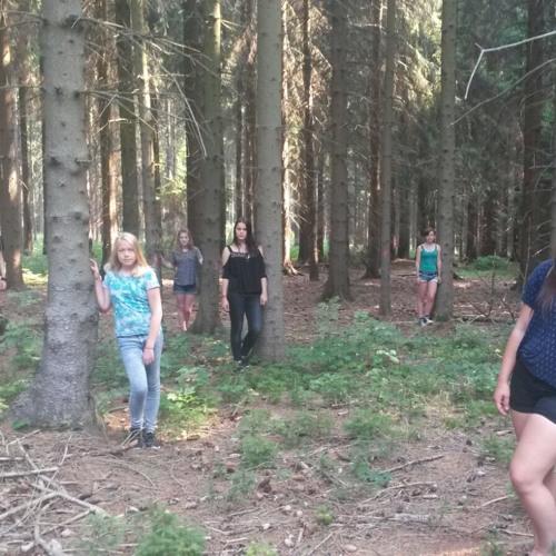 """frei nach 'Sommernachtstraum' - Akt 2 - """"Zusammen Gehn Wir Den Weg"""""""