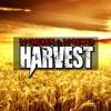 Dj Chicken & Dj Szwed - Harvest (Original Mix) 'Free Download'