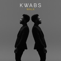 Kwabs Walk (Remix Ft. Fetty Wap) Artwork